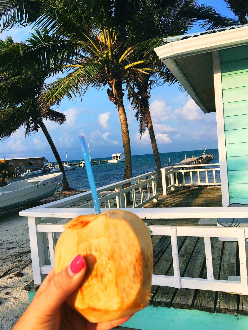 Caye Caulker Iced Coconut